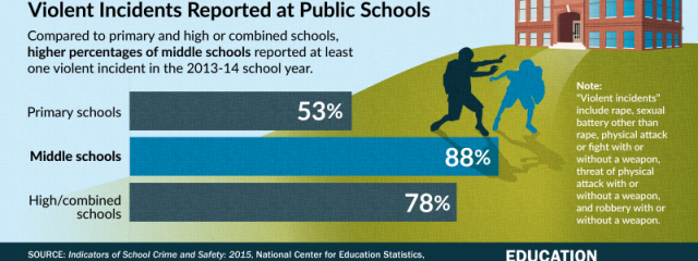 Public School Incidents